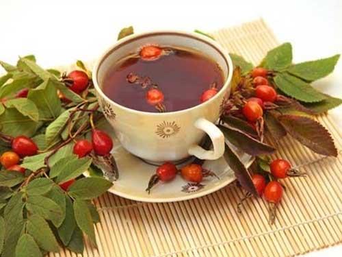 полезные свойства плодов и листьев шиповника