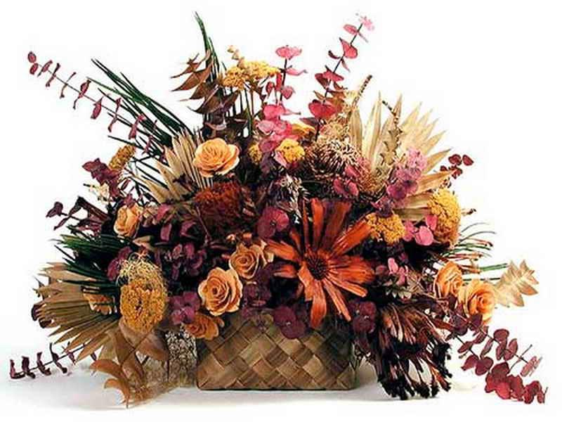 Стоит ли в доме держать сухоцветы?