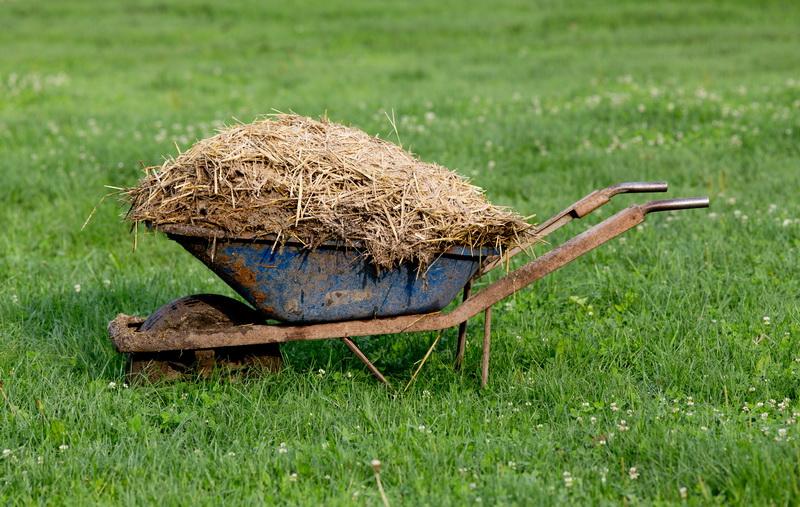 Рассказываю, почему я Не раскидываю Перегной по огороду и всем Дачникам не советую